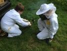 Včelařský kroužek 2